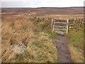 SE1242 : Metal gate, Bingley Moor  by Stephen Craven