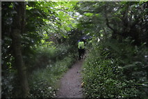 SX4951 : South West Coastal Path by N Chadwick