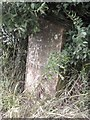 SJ4851 : Old Milepost by C Minto