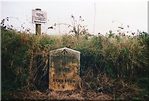 SS2515 : Old Milestone by Ian Thompson