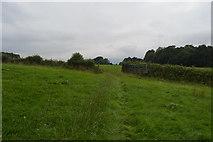 TQ3328 : Footpath through gate by N Chadwick