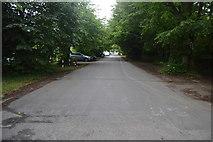 TQ3130 : Oldlands Avenue by N Chadwick