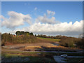 SJ6267 : Fields east of Martonsands by Stephen Craven