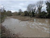 SP3065 : River Leam, Leamington by Rudi Winter