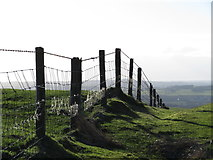ST0084 : Fence on Mynydd Meiros by Gareth James