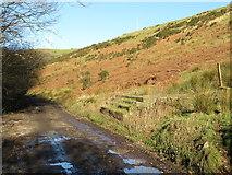SS9984 : Path-side structure in Cwm Llanbad by Gareth James