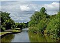 SJ8842 : Canal north of Hem Heath in Stoke-on-Trent by Roger  Kidd