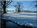 SE8643 : Towthorpe Medieval Village. by Paul Allison