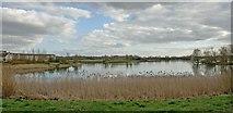 SP8935 : Walton Park, Milton Keynes by Peter Roberts