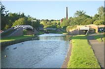 SO9588 : Dudley Canal at Windmill End by Martin Clark