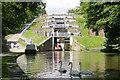 SE1039 : Bingley Five-Rise Locks by Martin Clark