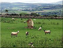 SM9237 : Ffynnon Druidion by Alan Simkins