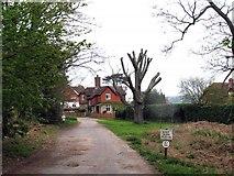 SU9718 : Burton Mill Farm Lane by Pam Brophy