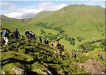 NN5235 : Glen Lochay by Anne Burgess