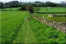 SK5214 : Broombriggs Farm Country Park by Michael Parry