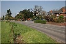 SU8477 : White Waltham by Brendan and Ruth McCartney