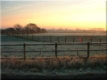 ST5688 : Frosty Morning by John Phillips