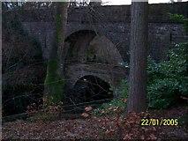 NT0199 : Rumbling Bridge - Twin Bridges by Karl Peet