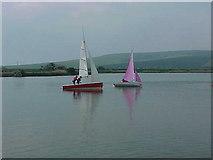 TQ4302 : Piddinghoe Pond by Terry Jones