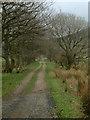 NY2035 : Track across farmland by Stephen Dawson