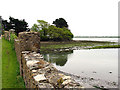 S8008 : Looking across Bannow Bay by Pam Brophy