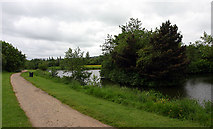 SD5303 : Orrell Water Park by Andy Stephenson