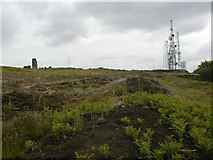 NZ5618 : Eston Hill by Mick Garratt