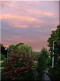 SK5243 : Evening Sky over Nuthall by Lynne Kirton