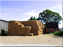 SU5078 : Haystack at Cheseridge Farm by Pam Brophy