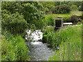 SW5632 : Miniature Water Wheel by Stuart and Fiona Jackson