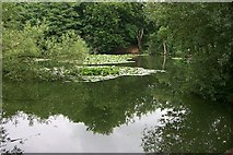 SU4510 : Millers Pond, Sholing Common by David Mainwood