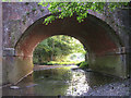 SU3407 : Railway arch allowing the Beaulieu River to pass under the tracks (1) by Jim Champion