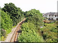 SX0458 : The railway and river at Bridges (Luxulyan) by Ben Harding