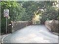 SE1639 : Railway bridge, Station Road by David Spencer