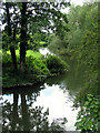 SU5766 : Reflections on the Kennet River: Woolhampton by Pam Brophy