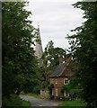 TM0287 : St. Andrew's Church, Quidenham by Ian M