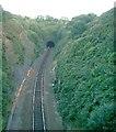 SD7020 : Sough Tunnel Northern Portal by John Lomas