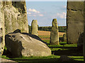 SU1242 : Past the Stones: Stonehenge by Pam Brophy