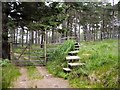 NN8268 : Stile in Glen Banvie Wood by Lis Burke