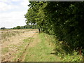 TL0656 : Beside Tilwick Wood by Kokai