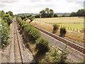 SU8099 : Saunderton Split - railway tracks diverge to pass a hill by David Hawgood