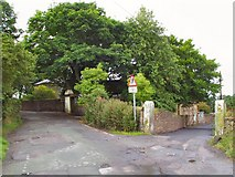 SJ9994 : Whitegates Intersection by Roger May