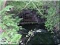 SK1769 : Magpie Sough by Alan Fleming