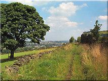 SE1232 : Deep Lane, near Clayton by David Spencer