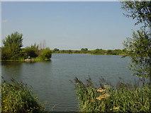 SJ2490 : Lingham Mere by Sue Adair