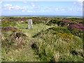 SW3929 : Trig point within Bartine Castle, Bartinney Downs by Jim Champion