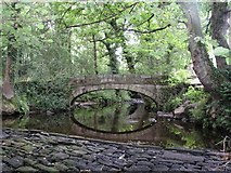SK2987 : Rivelin Valley Country Park by Alan Fleming