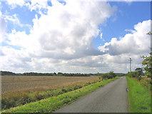 TM3163 : Un-named by-road, near Cransford, Suffolk by John Winfield