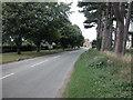 SJ4466 : Minor road by Dennis Turner