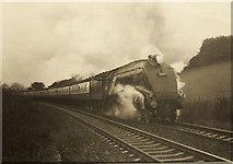 NT1684 : Railway Tracks Half Full by Simon Johnston